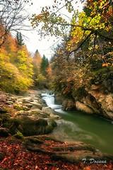 Cascada, Selva de Irati (T. Dosuna) Tags: bosque navarra paisvasco paisaje 20171019 landscape largaexposición selvadeirati españa spain tdosuna nikon d7100