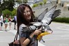 _Q9R5397 (Dream Delivered (Dreamer)) Tags: girl bird pigeon