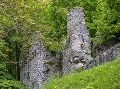 Castle Ruin Rodenstein - Odenwald/Germany (rockheadz) Tags: odenwald ruine ruin baum trees castle forrest