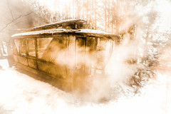 ghost tram (sami kuosmanen) Tags: taivas tree talvi trees travel tram raitiovaunu old outdoor orange outdoors outo nature north europe exposure expression emotion eerie tumma valo suomi finland forest abandoned smoke savu