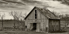 Rural America (will139) Tags: barn blackandwhite monochrome ruralamerica ruralindiana aging nik