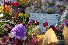 2018 04 26_7893 (djp3000) Tags: mellastmansquare northyork toronto torontostrong memorial tributes yongestreetattack