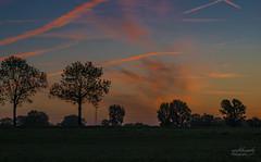 Golden Hour (rockheadz) Tags: sonnenaufgang sunrise goldenhour goldenestunde himmel sky