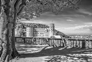 Heidelberg Castle - Sunny BW