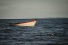 © monica silveira (© monica silveira   fotografia) Tags: barco mar paisagem oceano atlantico nikon nikkor bahia cores navegar