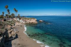 San Diego - La Jolla Cove (simone_a13) Tags: usa unitedstates california socal sandiego coast ocean lajolla bluesky beach