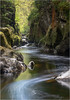 Fairy Glen (Phil Durkin) Tags: fairyglen flowing gorge northwales spring tree lake river water s curve green moss rocks