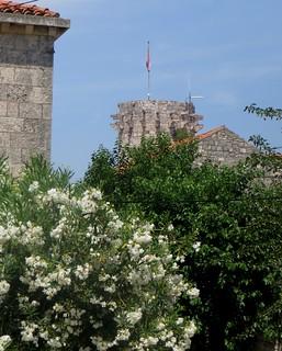 Korčula, comitat de Dubrovnik-Neretva, Dalmatie, Croatie.