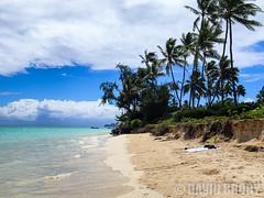 P9070042 (dbrodsky9) Tags: kailua hawaii unitedstates us