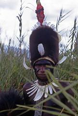 NG-D4--022b (Stichting Papua Erfgoed) Tags: papua stichtingpapuaerfgoed pace papuaheritagefoundation nederlandsnieuwguinea irianjaya irianbarat newguinea voormalignederlandsnieuwguinea