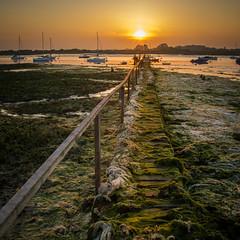 Jetty at Bosham, Sussex - UK (Mark MacFeeters) Tags: bosham sussex seaweed sunset jetty
