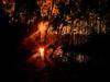 double sun (FotoTrenz NRW) Tags: sunset waterreflection redsun forest glowingsun nature evening moodypics moody sunstrokes sonnenuntergang sonne spiegelung wasserspiegelung wald wasser himmel