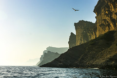 Calanques de La Ciotat (jmmuggianu) Tags: provence provencealpescôtedazur laciotat calanque calanques mer sea mediterranean méditerranée