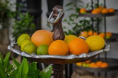 Citrus still life (frankmh) Tags: fruit citrus stilllife stilleben sofiero helsingborg skåne sweden
