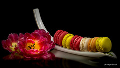 Colors (Magda Banach) Tags: canon canon80d sigma150mmf28apomacrodghsm blackbackground colors flowers macro nature plants red sweets tulips yellow food macaroons