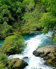 Le chiare fresche e dolci acque - Fontane de Vaucluse (FR)