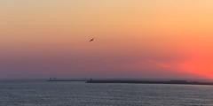 Have a great weekend (tribsa2) Tags: nederlandvandaag sunrisesunset sunset seaside sky seascape shoreline sea nederland netherlands noordpier