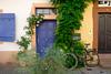 No.6 (John fae Fife) Tags: fujifilmx bicycle badenwürttemberg plants germany xe3 door roses heidelberg