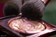 Ready for the Day   HMM (Irina1010) Tags: readyfortheday macromondays makeup brush mirror macro canon