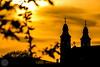 Halk bűvölet II. (tarczalieva) Tags: naplemente természet tájkép pünkösd