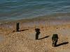 Southsea Beach-E4200133 (tony.rummery) Tags: beach em10 groyne mft microfourthirds omd olympus portsmouth posts seaside shadows shingle southsea england unitedkingdom gb