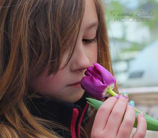 My Little Tulip