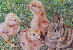 """""""The Gathering Place"""" (nehonaker) Tags: chicks bunny coloredpencildrawing animals babyanimals chickens rabbits farmanimals coloredpencilanimals"""