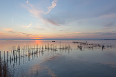 l'Albufera (conchagcarpena) Tags: like sunset water sky