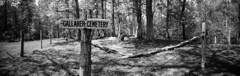 Cemetery in the Woods (lancekingphoto) Tags: cemetery woods historic pinhole clipper6x18 fujineopanacros100 120film mediumformat oakridge tennessee thesouth blackandwhite bwfp thesecretcity gallahercemetery