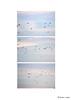Sans titre-2 (hiocolena) Tags: oiseaux triptyque ciel nature