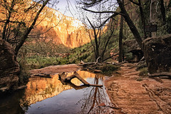 Utah A Life Elevated (dorameulman) Tags: dorameulman utah zionnationalpark landscape landscapephotography beautiful reflections mountains sunset haiku canon7dmark11 canon