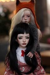 Zaoll meet up 17.05.18 (enuayudidi) Tags: doll dollmore zaoll bjd abjd luv narsha