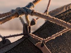 Frosty morning (HiMortl) Tags: outdoor zelt tent winter ice eis frost sonnenuntergang sonnenaufgang camping panasonic lumix g6 lumixgvario14140f3556 sundown sunset sunrise