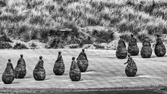 Conversation Piece (michaeljoakes) Tags: fujifilmxt2 fuji blackandwhite sculpture southshields juanmunoz conversationpiece weebles mono tyneside xf100400mmf4556rlmoiswr 400mm 11000s f71 iso400