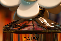 Ready For The Day (amarilloladi) Tags: macro macromondays perfume daisy marcjacobs readyfortheday
