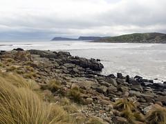 Cloudy Bay (Baractus) Tags: john oates cloudy bay bruny island tasmania australia inala nature tours