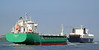 ARKLOW MARSH & SEALANDIA SEAWAYS (kees torn) Tags: arklowmarsh arklow selandiaseaways hoekvanholland nieuwewaterweg dfds ferry