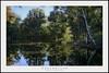 Equinoccio 004 (miguelmoralesfffff) Tags: palos agua reflejos arboles laguna