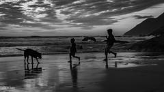 Beach Sunset-2537 (RobDotInfo) Tags: beach landscape sunset beauty noordhoek ocean sea kids family dog play blackandwhite