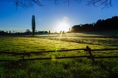 Herdecke (tribalandre) Tags: herdecke ende sonnenaufgang nrw enneperuhr kreis deutschland gras blauer himmel grünes