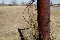 Rusty Fence (gabi-h) Tags: fence wire rust gabih old hff happyfencefriday princeedwardcounty shadow sunshine road barbedwire