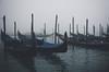 Gondolas moored in Venice. blog | instagram | web (Maurin_S) Tags: lensblr agameoftones foggy cloudy gondolas venice photography photoblog italian photographers tumblr radar photoessay original