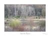 Steinke Basin (baldwinm16) Tags: devilslake may statepark steinkebasin wi wisconsin nature season spring springtime