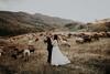 With you... (anvelvet) Tags: wedding sheep franka batelić s tobom dress groom bride music autumn fall croatia october inspiration
