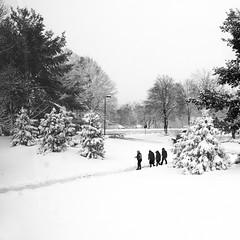 Last Winter (Something Sighted) Tags: blackandwhite candid people scènederue streetphotography snow buckscounty noiretblanc laneige winter lhiver smartphone