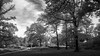 View of Central Park Around West 95th Street (Eric Gross) Tags: pastoral newyork tranquilscene manhattan monotone centralpark