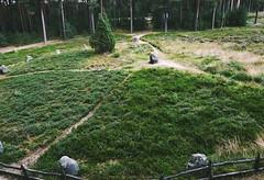 monn (↟ ↟ ↟) Tags: odry stonecircles sacred kaszuby poland polska kamiennekregi wielbark archaeology stonecircle