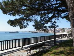 Otra vista de Palmeira-Ribeira(Coruña-España) (Los colores del Barbanza) Tags: parque palmeira ribeira barbanza coruña galicia españa mirador point de vue lookout