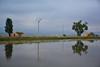 REFLEJOS (alfredo2057) Tags: alfredo arbol agua azul nublado vegetacion laguna largaexposicion nikon luz planta color cielo rio campo casa