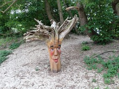 Tree Face (Nobo Sprits) Tags: westduinpark westduinparkdenhaag westduinparkscheveningen denhaag duinen dunes park thehague lahaye lahaya treeface forestface whompingwillow